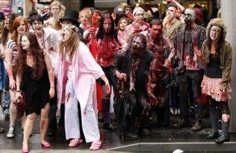 Дворцовая площадь разыскивает  зомби