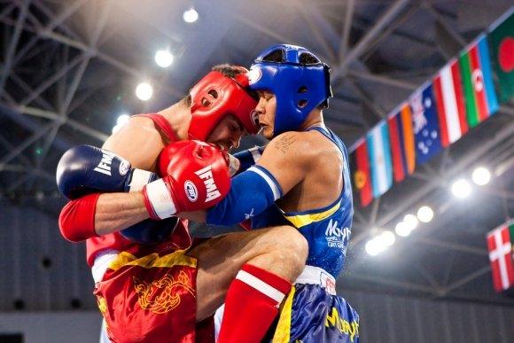 Всемирные игры боевых искусств