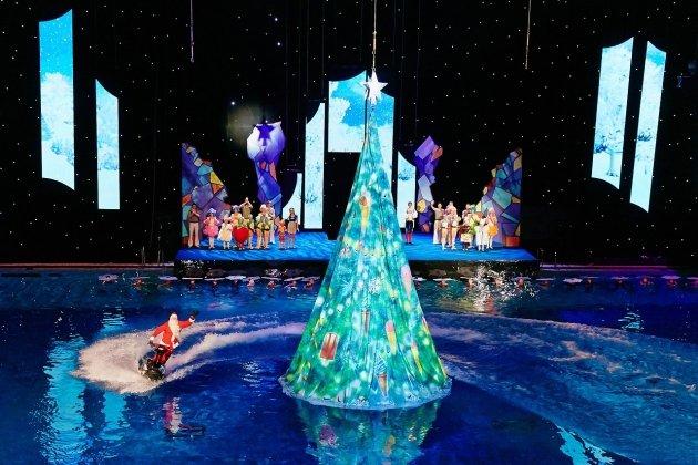 Новогодняя сказка на воде «Рецепт волшебства»