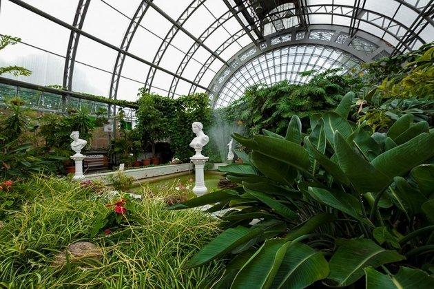 Ботанический сад Петра Великого в ежегодной акции «Ночь музеев»