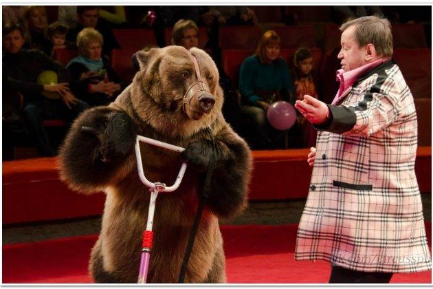 Большой Санкт-Петербургский Государственный Цирк