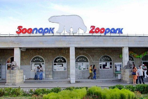 Стоимость часы ленинградский зоопарк работы стоимость на час аренда машин