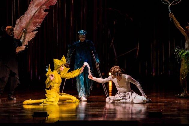 Шоу Varekai от Cirque du Soleil в Санкт-Петербурге
