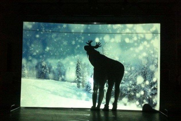 Театр теней Moonlight запускает проекта на Boomstarter для премьеры спектакля по сказкам Киплинга
