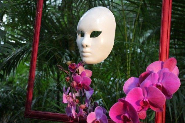 Выставка орхидей  в Ботаническом саду «Осколки радуги 2015»