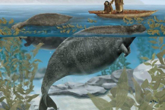 Выставка исчезнувших животных «Чёрная книга»