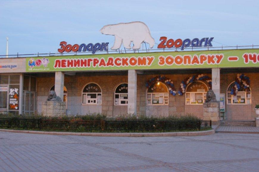 Зоопарк в питере